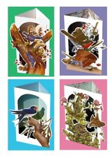 3D greeting card gift set D: 4X Birds, Swallow, Robin, Wren, Nuthatch, Wildlife