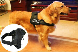 Soft Padded Walking Dog Pet Harness Small Adjustable Working Training Small Size