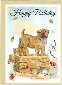 "Shar Pei Dog (4""x 6"") Birthday Card - blank inside - by Starprint"