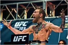 Conor McGregor UFC Boxing Sports Star Poster Art Print 91x61 cm
