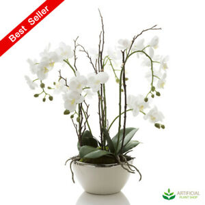 Artificial Fake Plants Orchid in White Pot with Silver Rim 60cm - Real Touch