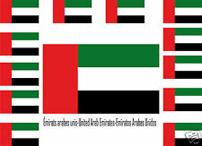 Assortiment lot de 25 autocollants Vinyle stickers drapeau Émirats-arabes-unis