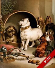 DIOGENES AS A DOG NO PLACE LIKE HOME FUNNY ART PAINTING PRINT ON REAL CANVAS