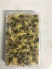 Frozen Fish Food-4 X 100g blister packs-Whole cockle NOT BCUK