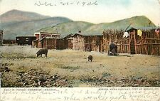 c1906 Postcard; Casas de Obreros, Torreon Coahuila Mexico Laborers Huts Pigs