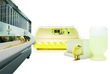 Quail Starter Kit-Incubator, Brooder, Egg Turner, Waterer, 30 Bobwhite Quail Egg