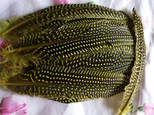 10/50pcs Natural  guinea fowl feathers feather 12-17cm/5-7inch Decorative