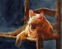 Tabby Cat art Giclee Print of Orange watercolor painting sun nap marmalade pet