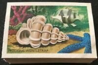 Shell 1960s Trade Cards SHELLS,FISH&CORAL Complete Set Of 60
