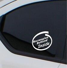 2x Norwegian Buhund Inside stickers car decal