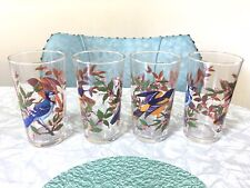 4 Vintage Arcoroc France Blue Jay Baltimore Oriole Drinking Glasses Tumblers