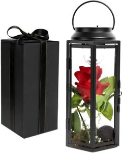 RED SILK ARTIFICIAL ROSE IN GLASS LIGHT UP HANGING LANTERN LAMP. INDOOR OUTDOOR