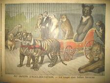MADAGASCAR COLONIALE PRISE CAMP HOVA ZOO CAGE BETE FEROCE LE PETIT JOURNAL 1895