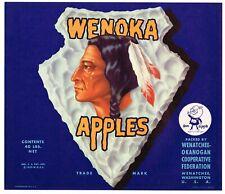 GENUINE CRATE LABEL VINTAGE AMERICAN INDIAN ARROWHEAD WENOKA 1940S DOC APPLE
