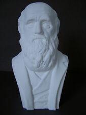 Charles Darwin Bust, 21cm Handmade in England