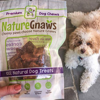 Nature Gnaws Beef Bites for Dogs - Premium Natural Grain Free Dog