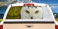 HOOT Rear Window Graphic truck view thru vinyl decal back