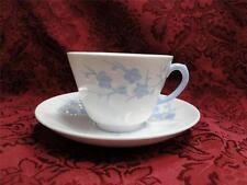 Spode Geisha Light Blue, Flowers, Blanche De Chine: Cup & Saucer Set (s)