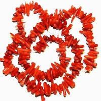 CRL128 Red Bamboo Coral Cupolini Small 5mm - 15mm Freeform Branch Beads 15""
