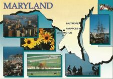 Postcard MD Maryland State Flower Map State Capital Horse Farms Baltimore MINT