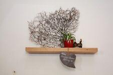 Wandboard-massiv geölt Eiche Tablarträger Holz-Regalbrett-60 cm-Bord-Wildeiche