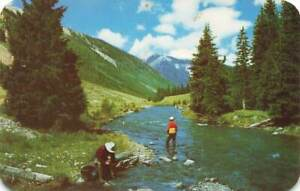 Postcard Trout Fishing Stream Mountain Southwest Rounded Corners