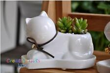 Small clay pots, planters for garden, succulent, cactus, herbs - Cat