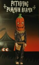 Petrifying Pumpkin Reaper Halloween Costumes Age 7-8 includes Mask