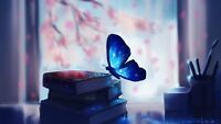 Butterfly - Book Magic Fantasy Calm Neutral Wall Art Poster / Canvas Pictures