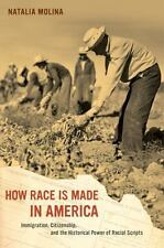 How Race Is Made in America : Immigration, Citizenship...