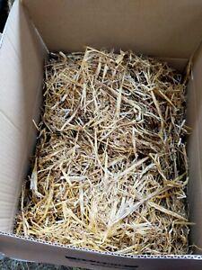 Barley Straw 3kg in a Box