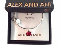 Alex and Ani January Bangle Bracelet Color Code Shiny Silver New Tag Box Card