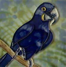 Hyacinth Macaw Parrot Bird Decorative Ceramic Wall Art Tile 4x4