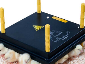 CHICK BROODER HEATING PLATE MEDIUM (40cm x 40cm - 35 CHICKS) w/FREE POSTAGE HEAT