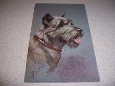 1950s PINSCHER SCHAUZER DOG VTG ARTIST SIGNED POSTCARD