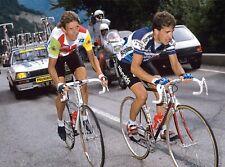 PEDRO DELGADO & STEVEN ROOKS TOUR DE FRANCE 1988 POSTER