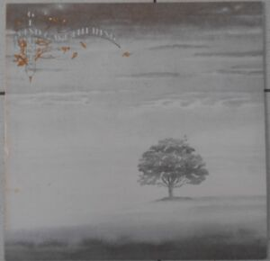 Genesis Wind And Wuthering 33T LP with special french insert 9103 114