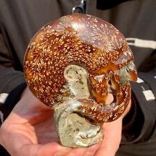 246G Rare! Natural Tentacle Ammonite FossilSpecimen Shell Healing Madagascar