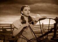 Wizard Of OZ Dorothy Gail Sepia 8x10 Glossy Photo