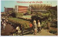 Marineland Of The Pacific California CA Vintage Postcard Southern California