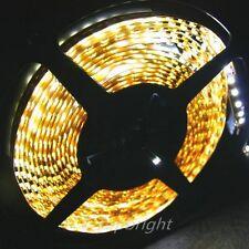 5X 5m 500CM White 3528  SMD LED Flexible 600 LEDS Strip