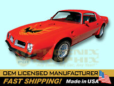 1973 1974 1975 1976 1977 1978 Pontiac Firebird Trans Am Decals & Stripes Kit