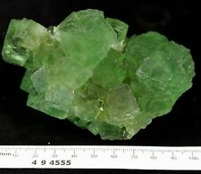 Glassy stepped Green Fluorite on Quartz mineral specimen Fujian China CM494555