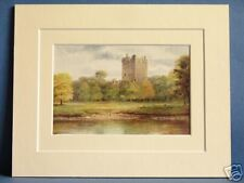 BLARNEY CASTLE STONE MUNSTER IRELAND VINTAGE DOUBLE MOUNTED PRINT 10X8 OVERALL