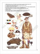 PLANCHE UNIFORM PRINT WWI British Army British territorial units United Kingdom