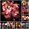 20 LED Battery or Plug in Orchid Flower Fairy String Lights Wedding Party Decor