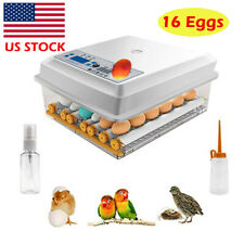 New listing 16 Eggs Incubator Poultry Mini Digital Hatcher Auto Duck Bird Hatching Machine