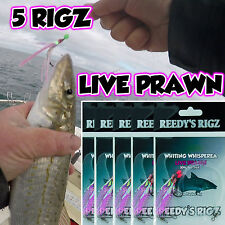 5x Whiting Rig Tied Rigs Size 4 hook Paternoster BloodWorm Bait 30lb Surf Beach