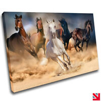 HORSES ANIMALS GALLOPING STALLION CANVAS Wall Art Picture Print