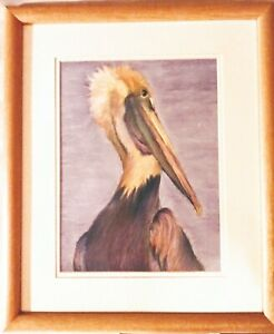 Original Pastel Pelican Drawing by Lynette Otis Signed Framed